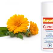 Basalis Calendula